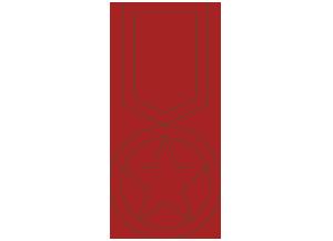 icona medaglia borgobuono